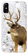 Huge Buck Deer In The Snowy Woods IPhone Case
