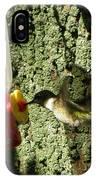Humming Bird IPhone X / XS Case