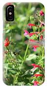 Hummingbird Drinking From Red Trumpet Vine IPhone Case