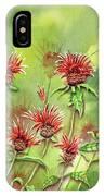Hummingbird In Beebalm IPhone Case