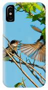 Hungry Birds In Tree Close-up IPhone Case