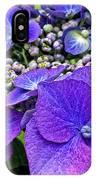 Hydrangea Plant IPhone Case