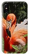 I Am So Pretty IPhone Case