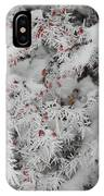 I Love Winter IPhone Case