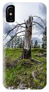 I Once Stood Tall IPhone Case