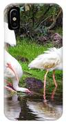 Ibis Reflections IPhone Case
