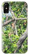 Ibises In A Tree IPhone Case