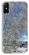 Ice Laden Birches IPhone Case