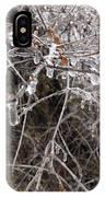 Ice Pearls IPhone Case