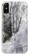 Ice Wonderland IPhone Case