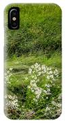 Icelandic Daisies IPhone Case