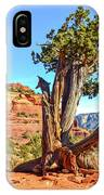 Iconic Southwest IPhone Case