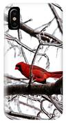 Icy Perch IPhone Case