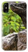 Iguana At Talum Ruins Mexico 2 IPhone Case