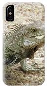 Iguana Eating Lettuce With His Tongue Sticking Out IPhone Case
