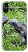 Iguana Kisses St Thomas IPhone Case