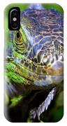 Iguana Stare IPhone Case