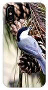 Img_0215-022 - Carolina Chickadee IPhone Case