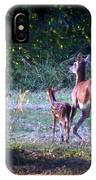 Img_0461-020 - White-tail Deer IPhone Case