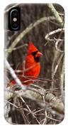 Img_0806 - Northern Cardinal IPhone Case