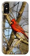 Img_2757-001 - Northern Cardinal IPhone Case