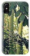In A Bamboo Garden IPhone Case