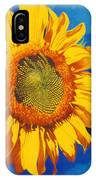 In All Its Glory IPhone Case
