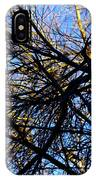 In Sunlight And In Shadow IPhone Case