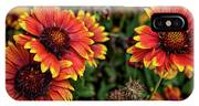 In The Summer Garden IPhone Case