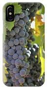 In The Vineyard IPhone Case by Nancy Ingersoll