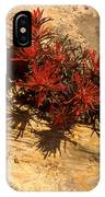 Indian Paint Brush IPhone Case