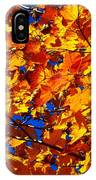Indian Summer ... IPhone Case