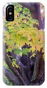 Indian Tree IPhone Case
