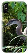 Injure Blue Heron IPhone Case