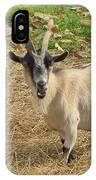 Inquisitive Goat IPhone Case