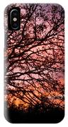 Intense Sunset Tree Silhouette IPhone Case