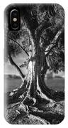 Intercoastal Pine IPhone Case