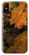 Into The Fall IPhone Case