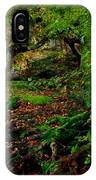 Into The Forest Of Fontainebleau IPhone Case