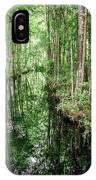 Into The Swamp IPhone Case