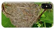Intricate Nest IPhone Case