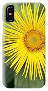 Inula Grandiflora IPhone Case