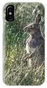 irish Hare IPhone Case
