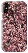 First Spring Blossom IPhone Case