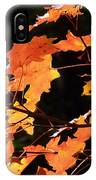 It's Fall IPhone Case