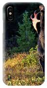 It's So Good To Be King IPhone Case