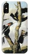 Ivory-billed Woodpeckers IPhone Case