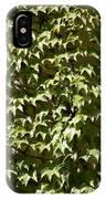 Ivy Sunlight IPhone Case
