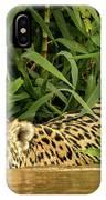 Jaguar Approaches Cayman IPhone Case