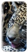 Jaguar Cub IPhone Case
